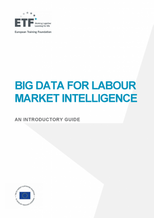 Big Data for labour market intelligence: An introductory guide
