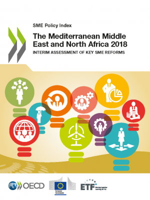 SME Policy Index: The Mediterranean Middle East and North Africa 2018 – Interim assessment of key SME reforms