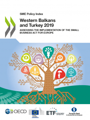 SME Policy Index: Western Balkans and Turkey 2019 – Assessing the implementation of the Small Business Act for Europe